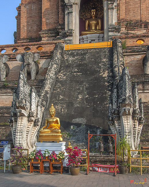 Wat Chedi Luang Phra Chedi Luang Five-headed Makara and Naga Guardians วัดเจดีย์หลวง ผู้ปกป้องห้าหัวพญามกรและนาคของ พระเจดีย์หลวง Photograph