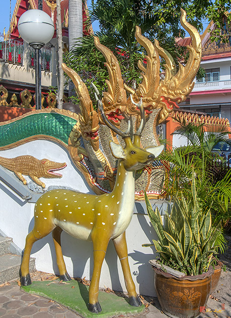 Wat Sakae Makara and Naga Guardian with Stag Guardian วัดสะแก ผู้ปกป้องมกรและนาค ด้วย ผู้ปกป้องกวางตัวผู้ Photograph